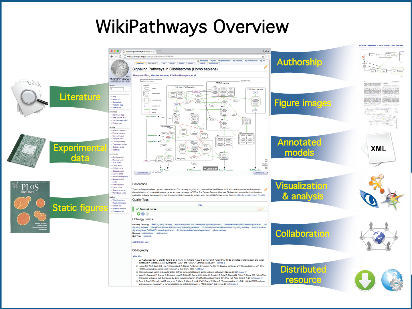 WikiPathways Ins & Outs