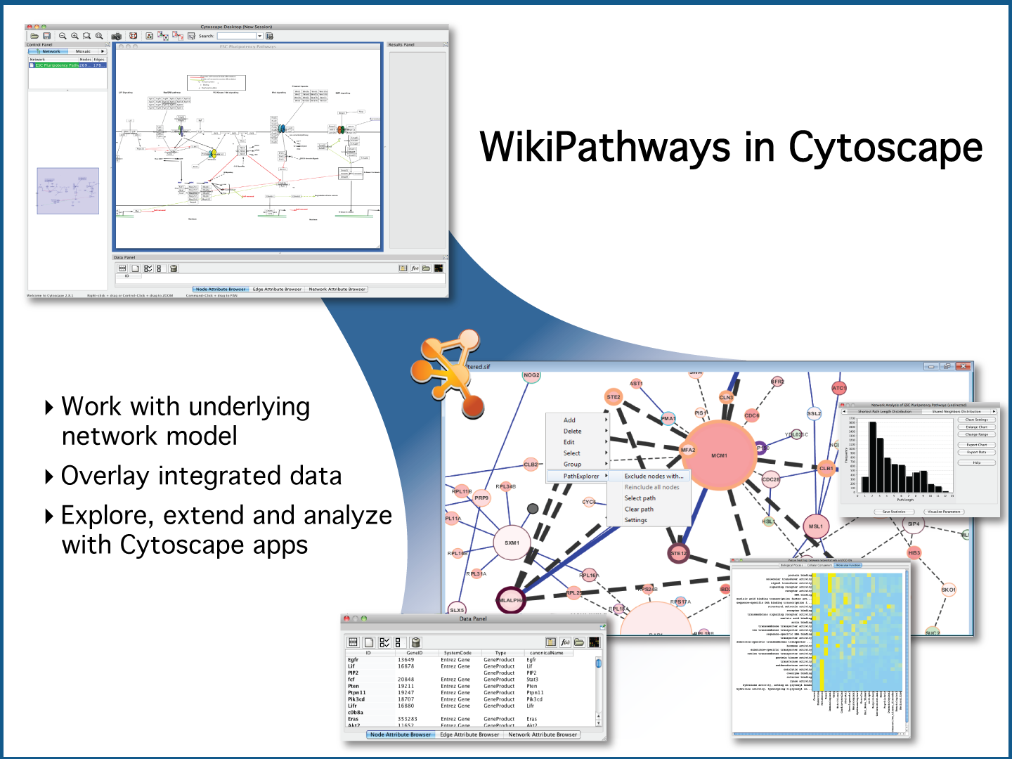 WikiPathways in Cytoscape